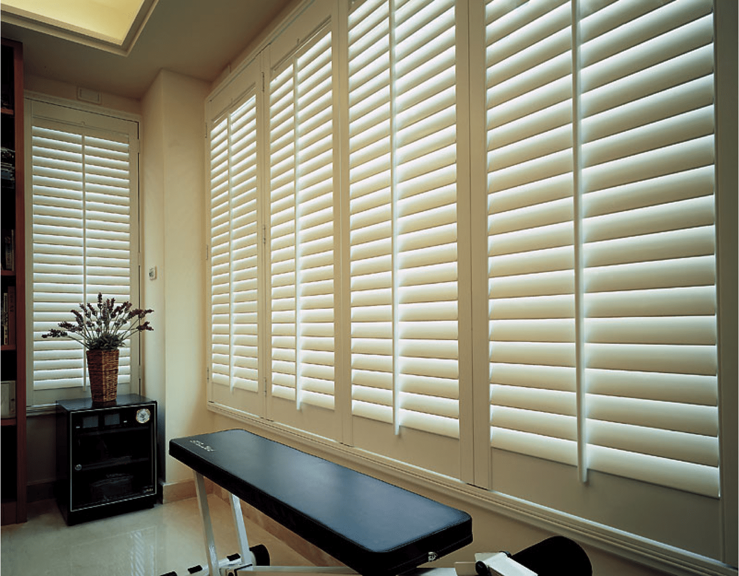shutters home blinds in plantation gator orlando for pin florida your